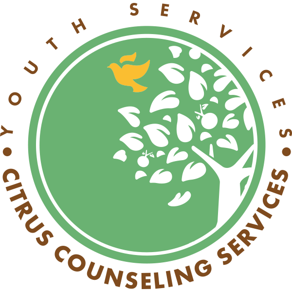CCS Youth Services